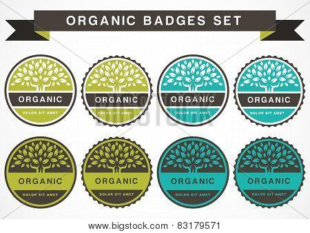 Green Circle Tree, Vector Logo Design Template. Set Of Organic Product Badge. Garden Or Ecology Icon