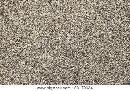 Poppy Seeds Background