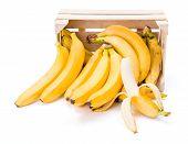 Ripe bananas spilling out of wooden box. Musa acuminata poster