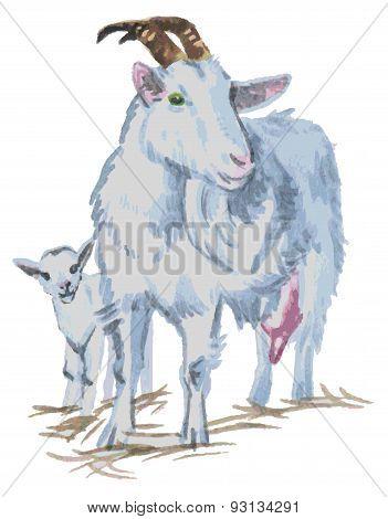 Goats Watercolor