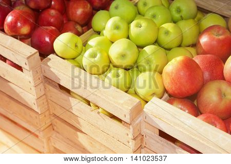 Wooden boxes with ripe red apples on a sunny day
