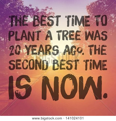 Inspirational Typographic Quote - The best time to plant a tree was 20 years ago, the second best time is now.