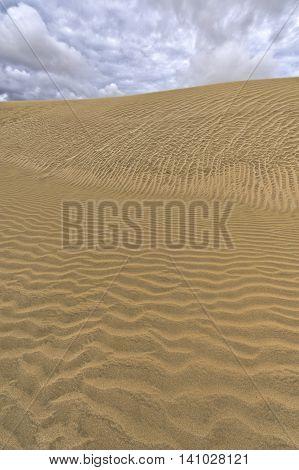 Sandstorm on the Te Paki Sand Dunes North Island New Zealand