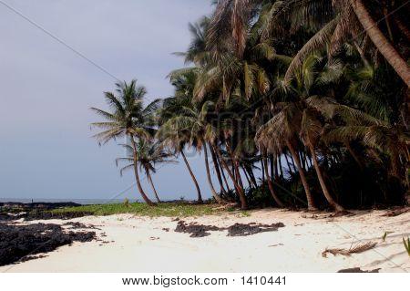 Beach S Tome E Principe