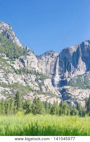 Yosemite Falls as seen from a meadow in Yosemite National Park in California, USA
