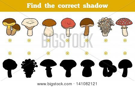 Find The Correct Shadow, Education Game About Mushrooms