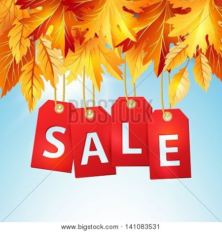 Autumn sale banner with colorful fall leaves. Vector illustration of discount tags on the blue sky background