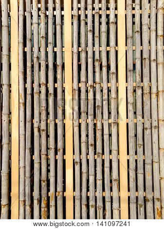 bamboo fence background and pattern for nature