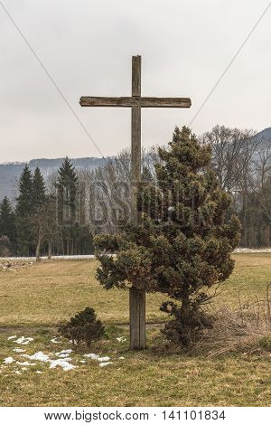 Wayside cross with a tree on a meadow in the winter