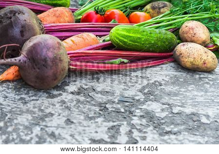 a lot of vegetables beet carrot cucumber onion pepper potato tomato close