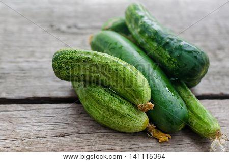 Fresh cucumbers on wooden background. Cloe up photo.