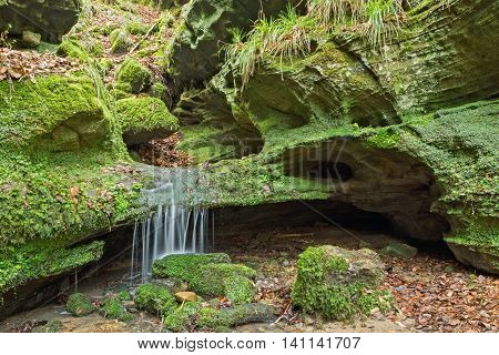 Tiny Waterfall in a forest in Luxemburg