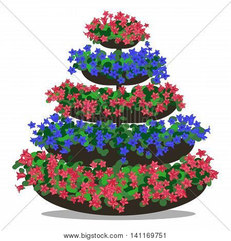 Vector colorful illustration of floral arrangement. Flowerbed