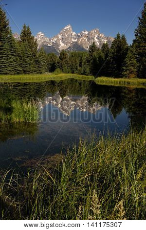 Mountains Reflected Smooth Water Grand Teton National Park