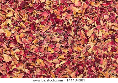 Organic dry Damask rose petals (Rosa damascena) in tea cut size. Macro close up background texture. Top view.