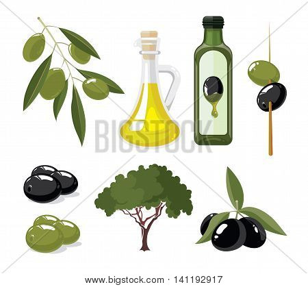 vector illustrations set of Olives, tree, oil botles and leaf isolated on white background. Pictures for your personal design project.