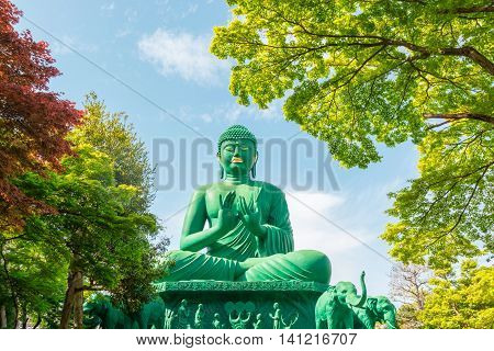 The Great Buddha Of Nagoya With Tranquil Place In Forest.