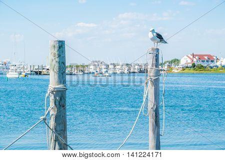 Montauk Lake - Long Island, US