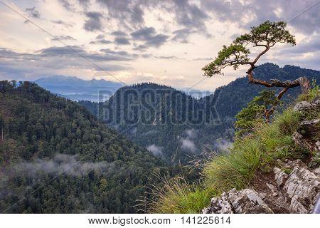 beautiful Polish mountains pieniny view Sokolica at sunrise