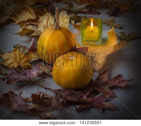 Pumpkins and candle in a candlestick on a background of leaves