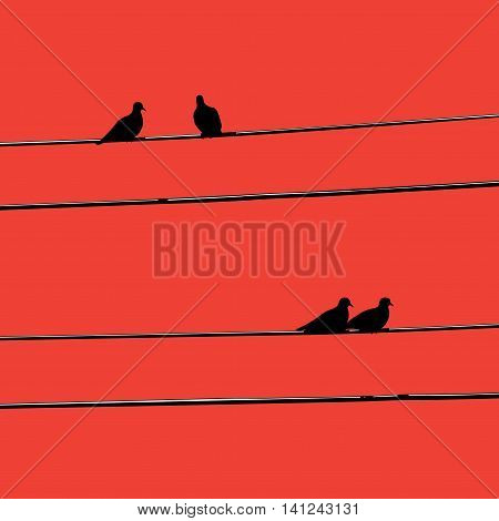 Silhouettes birds on wires background evening red.