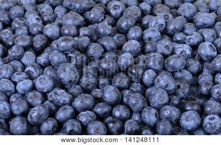close up of blueberries with water drops