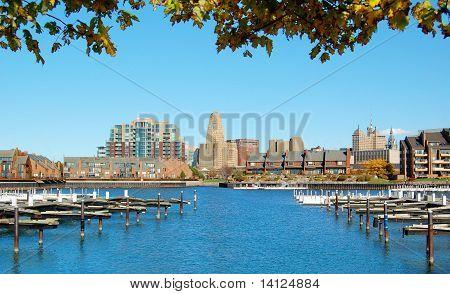 Marina & City Skyline