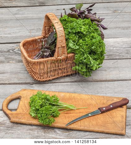 Basket with fresh parsley and basil on kitchen table