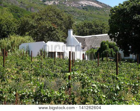 Farm House Paarl, Western Cape South Africa 01 b