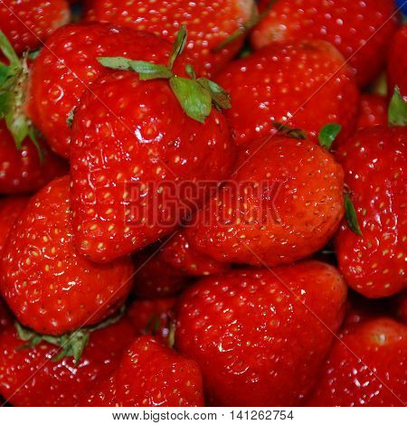 Large bright red ripe of fresh strawberries