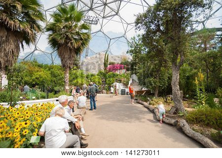 Cornwall, England - July 24, 2013: Eden Project visitors  observing the plants displays or seated resting up inside one of gaint domes Mediterranean Biome featuring plants from that region