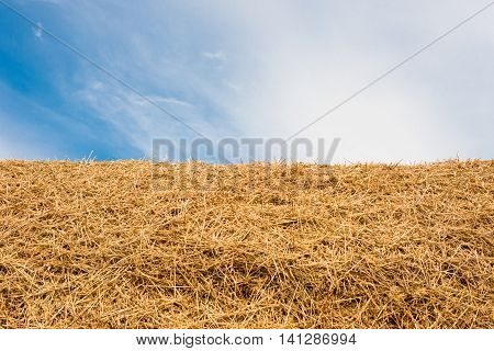 large stack of straw on a background blue sky with clouds