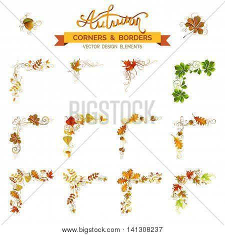 Vector Set Of Autumn Leaves Design Elements.