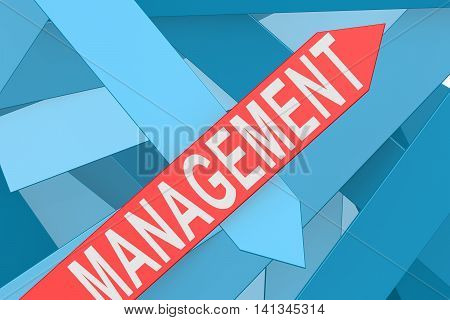 Management Arrow Pointing Upward