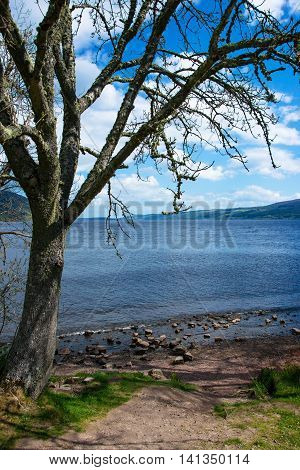 Nature Of Loch Ness In Scotland