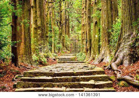 The Kumano Kodo trail at Daimon-zaka slope, a sacred trail in Nachi, Wakayama, Japan.