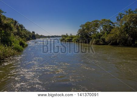 IGUAZU, ARGENTINA - MAY 14, 2016: amazing view of a river inside the national park of iguazu located in the north state of misiones in argentina.