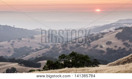 Sunset over San Francisco South Bay. Hazy Summer Evening at Joseph D. Grant County Park, San Jose, California, USA