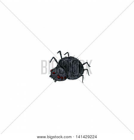 wtercolor cartoon spider, halloween symbol, hand drawn illustration