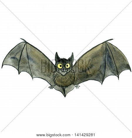 watercolor drawing cartoon bat isolated at white background, hand drawn illustration