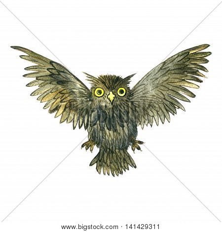 watercolor cartoon flying doodle owl, drawing bird isolated at white background, hand drawn illustrtion