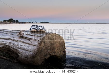 Shoes on log on beach at sunset