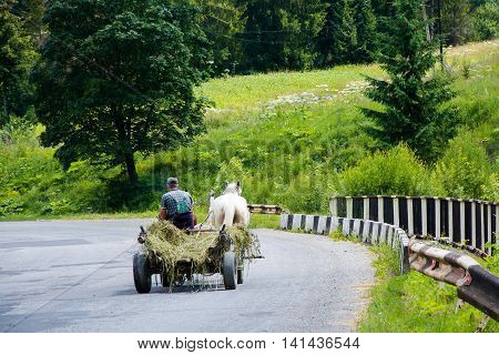 a man riding on a cart on the road in the mountains