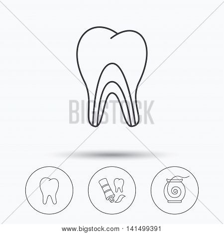 Tooth, dentinal tubules and dental floss icons. Toothpaste linear sign. Linear icons in circle buttons. Flat web symbols. Vector