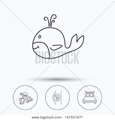 Whale, octopus and double bed  icons. Pregnancy linear sign. Linear icons in circle buttons. Flat web symbols. Vector