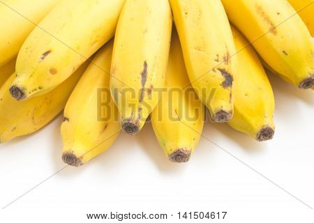 poster of Prata Banana on white background. (Musa x paradisiaca L. Musaceae)