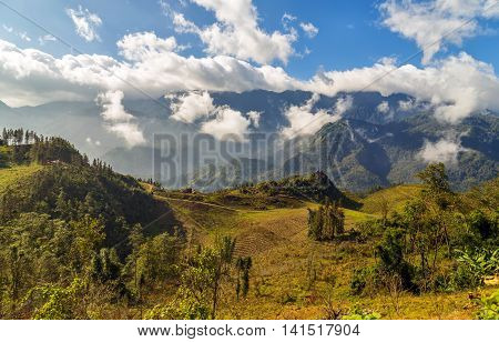 Rice Terraced Vietnam
