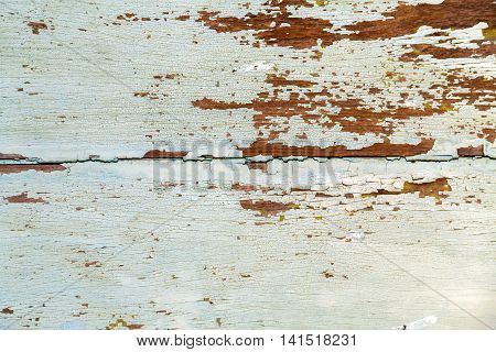 White Textur Background Wood
