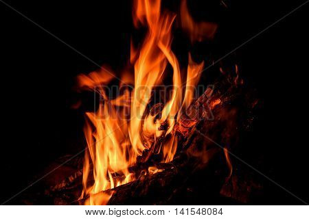 Red and orange spurts of flames charcoal and firewood in the fire on a black background