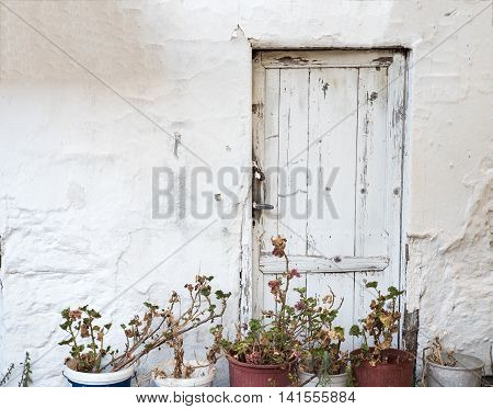 Old white wooden door with flower pots in front of it